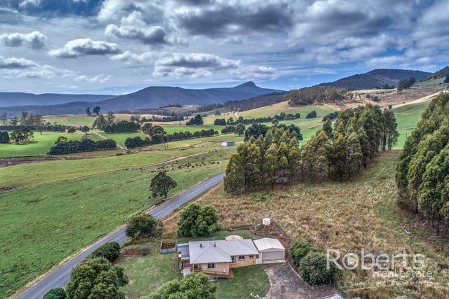 364 Mathinna Plains Road, Ringarooma TAS 7263