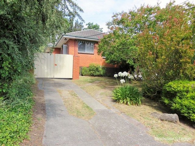 1/119 Holland Road, Blackburn South VIC 3130