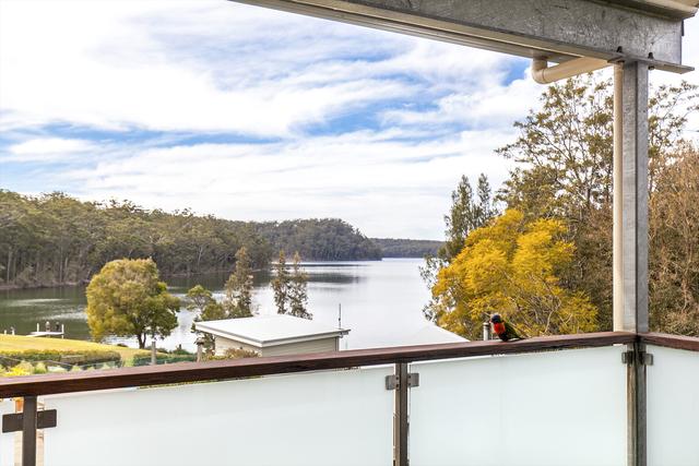 46 Kurrajong Crescent, NSW 2539