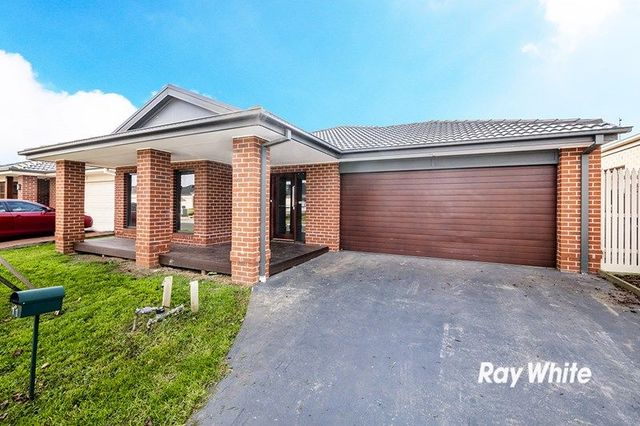 11 Appaloosa Grove, Clyde North VIC 3978