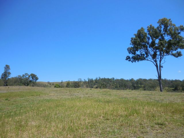 461 Dunns Road, Kyogle NSW 2474