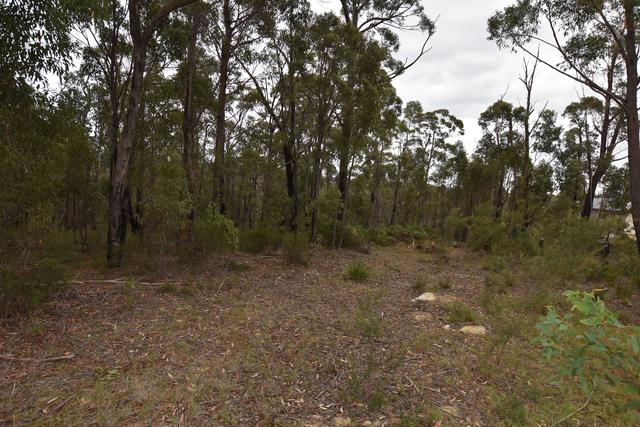 20 Gascoigne Street, Willow Vale NSW 2575