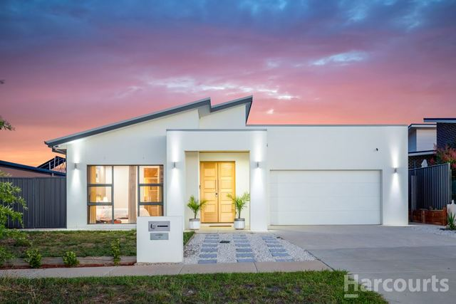 36 Terry Connolly Street, ACT 2611