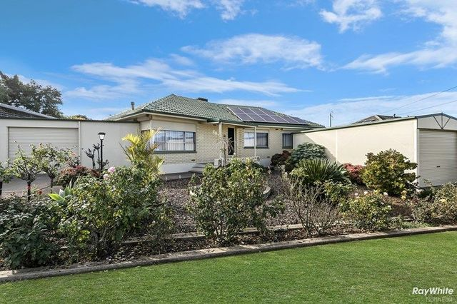 20 Esperance Terrace, Valley View SA 5093