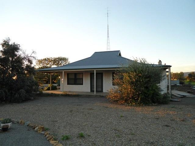 Lot 54 Oaks Road, Napperby SA 5540