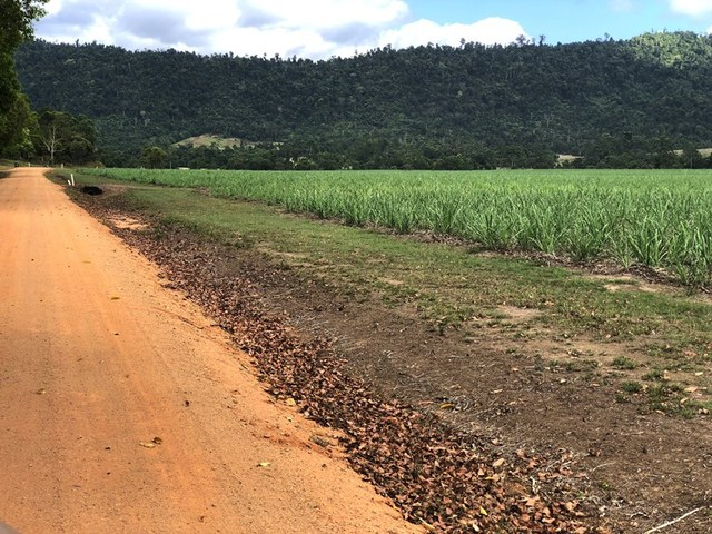 LOT 3 Tains Rd, QLD 4855