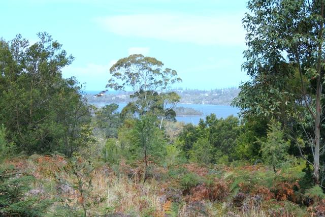 Lot B & C Old Mill Road, Turlinjah NSW 2537