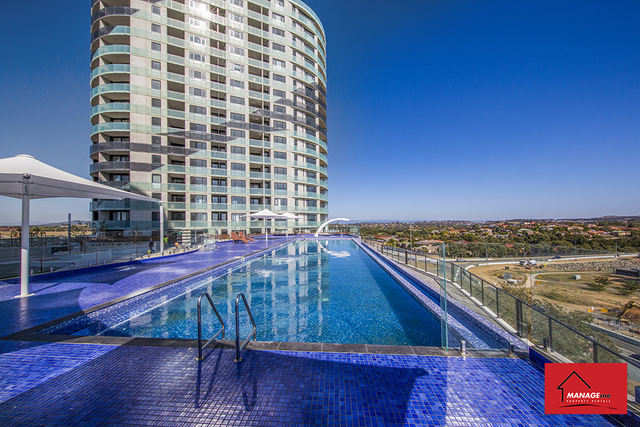 14/4 Gribble Street, ACT 2912