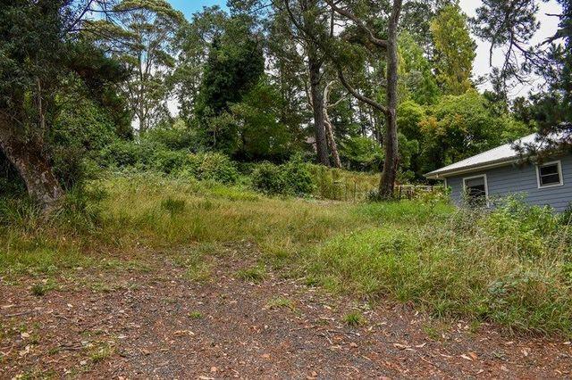 24 Gardiner Crescent, Blackheath NSW 2785