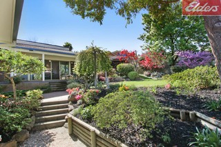 406 Carlma Crescent Lavington NSW 2641