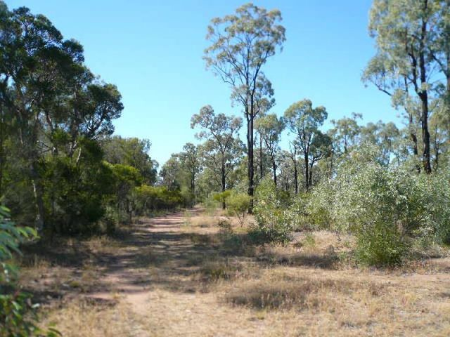 Lot 42 Bennetts School Road, QLD 4421