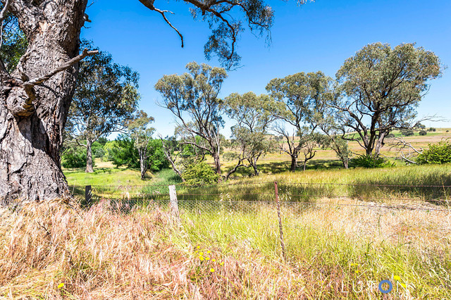 Coots Creek to Front Paddock - Lot 2