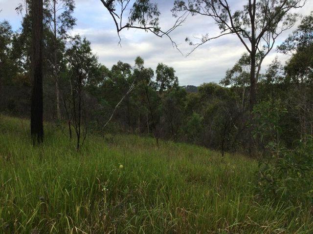 Geiger Road, Milford QLD 4310