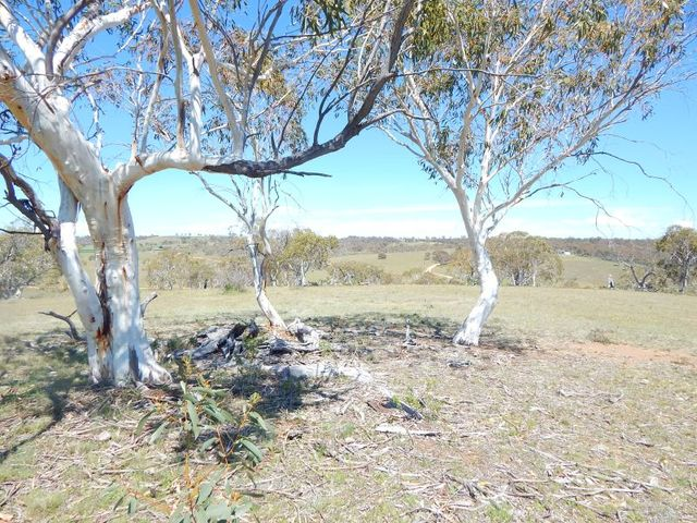 Lot 242 Dry Plains Road, Cooma NSW 2630