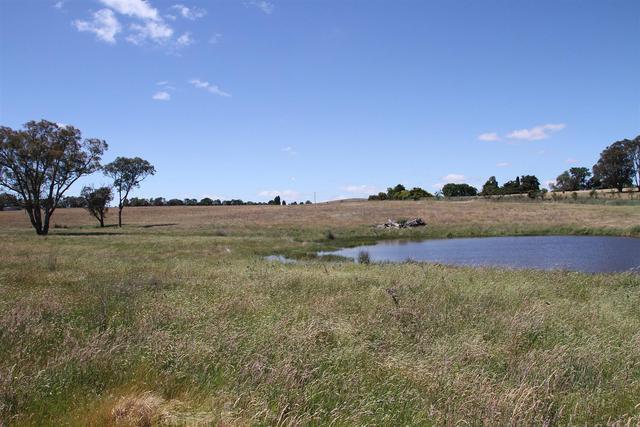 17 Tangmangaroo Road, Kangiara NSW 2582