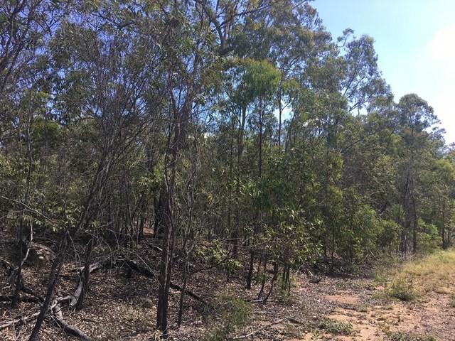 491 Dangore Mountain Road, Dangore QLD 4610