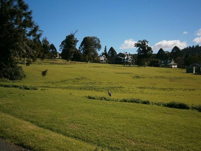 27 Firefly  Drive, Bunya Mountains QLD 4405