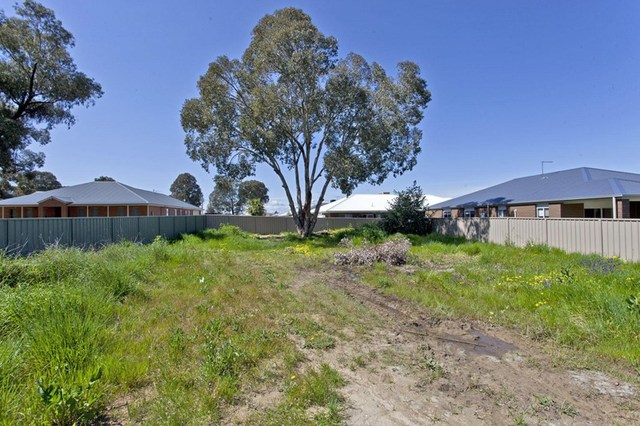 19 Chafia Place, Springdale Heights NSW 2641