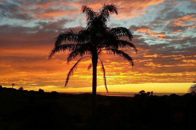 20 Princes Highway, Milton NSW 2538