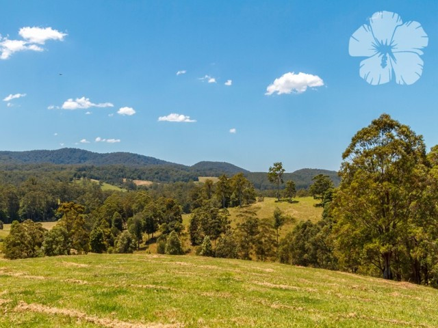 356 Squires Road, Wootton NSW 2423