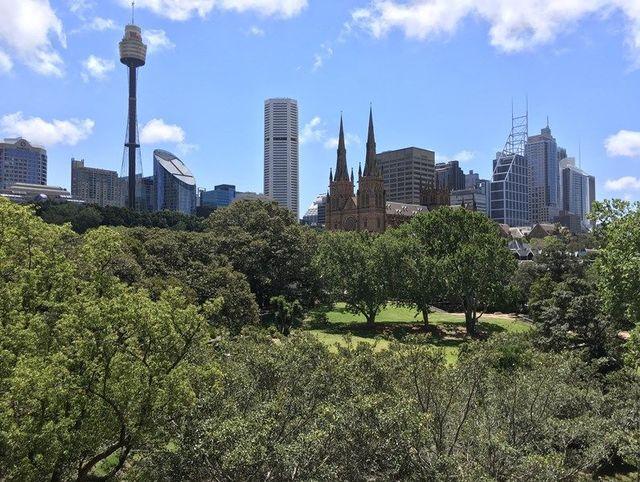 1 Boomerang Place, NSW 2011
