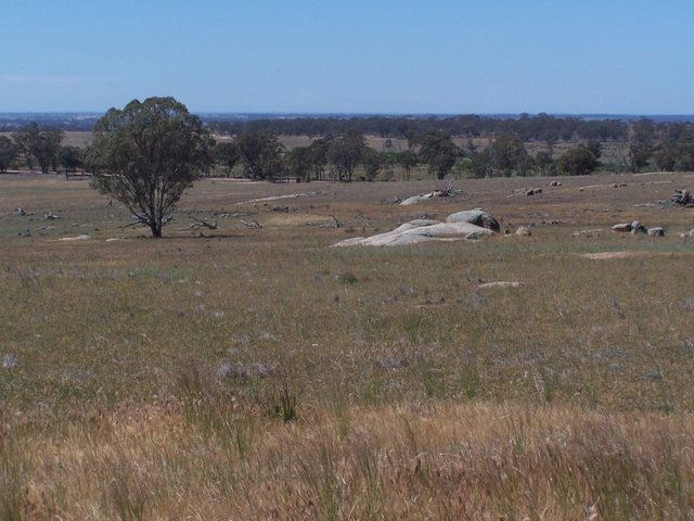 Old Canfields Road, Korong Vale VIC 3520