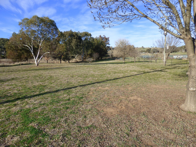 2246 Murringo Road, Murringo NSW 2586