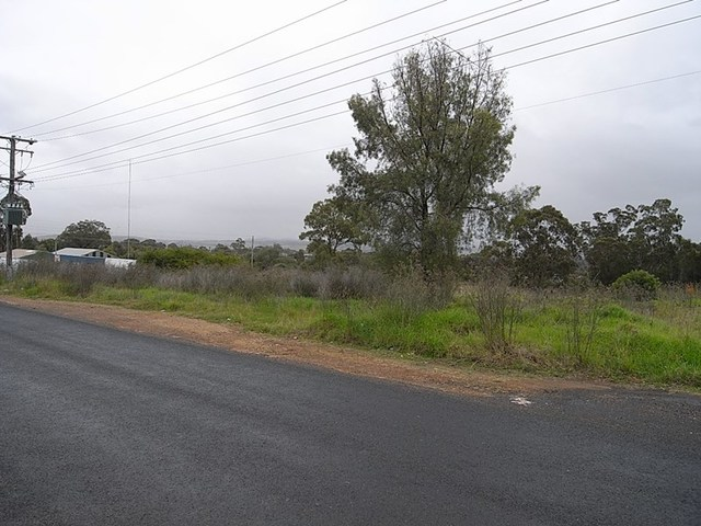 Lot 10 Common Road, Muswellbrook NSW 2333