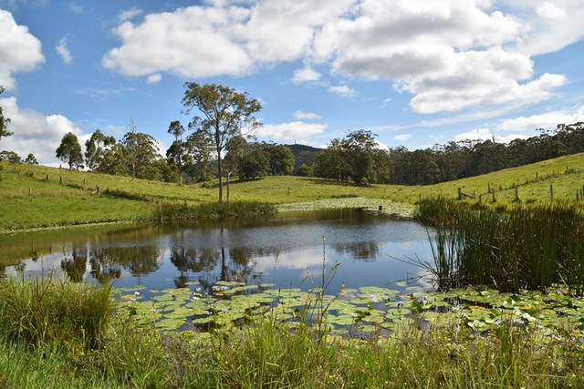813 Newmans Road, Wootton NSW 2423
