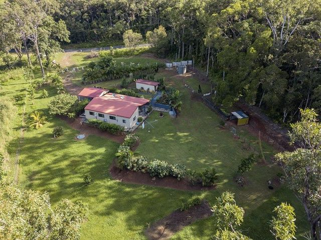 591 Bloomfield Road, Rossville QLD 4895