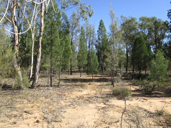 LOT 73 Community Lane, Tara QLD 4421