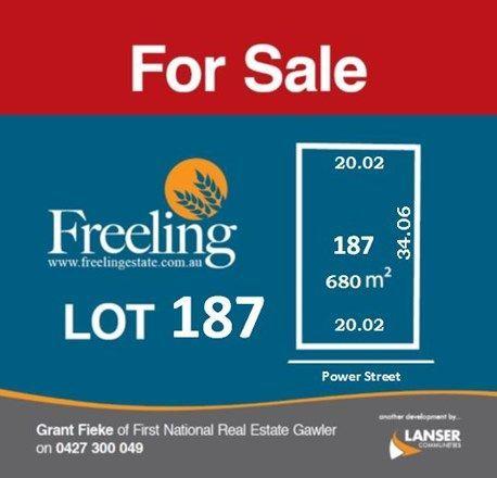 Lot 187 Power Street, Freeling SA 5372