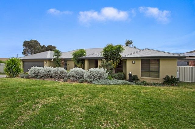6 Hibiscus Way, Tamworth NSW 2340