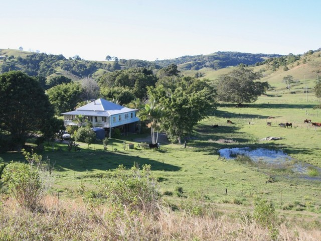 17 Pinetree Place, Piggabeen NSW 2486