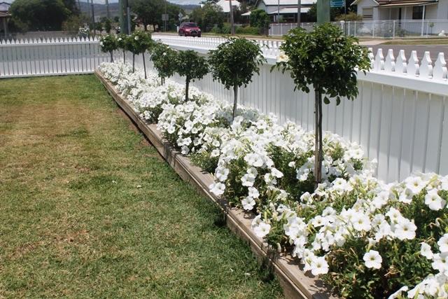 22 Crinoline, Denman NSW 2328