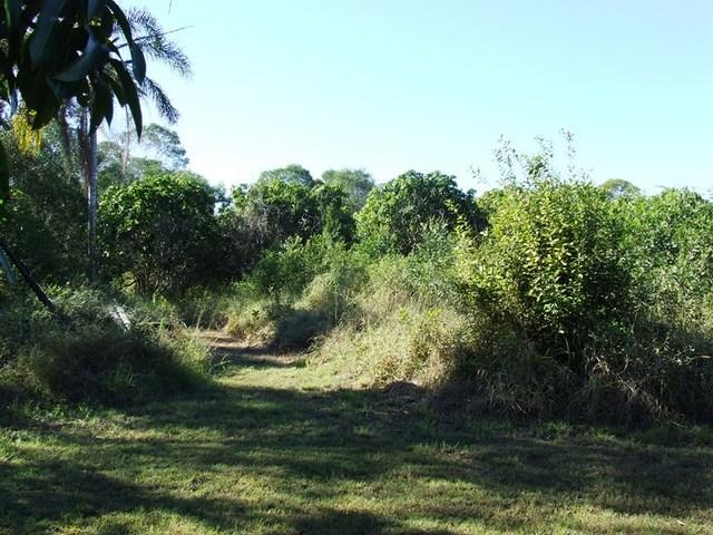 Bungadoo Rd, Bungadoo QLD 4671