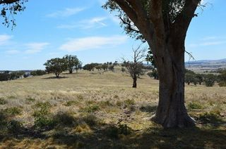 Lot 4 / 94 Old Cootamundra Road