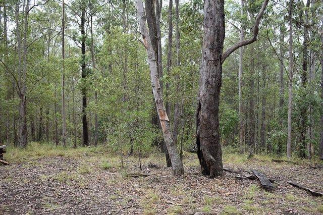 Lot 4 Kosekai Road, Yarranbella NSW 2447