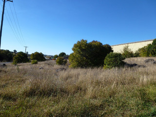 Lot 11and12 Wellington St Molong NSW 2866