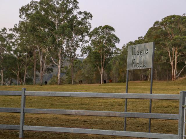 1087 Wollombi Road, Broke NSW 2330