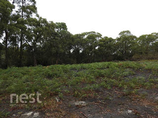 Lot 1 Corner Sandfly & Wiggins Road
