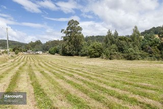 Lot 4 Costains Road