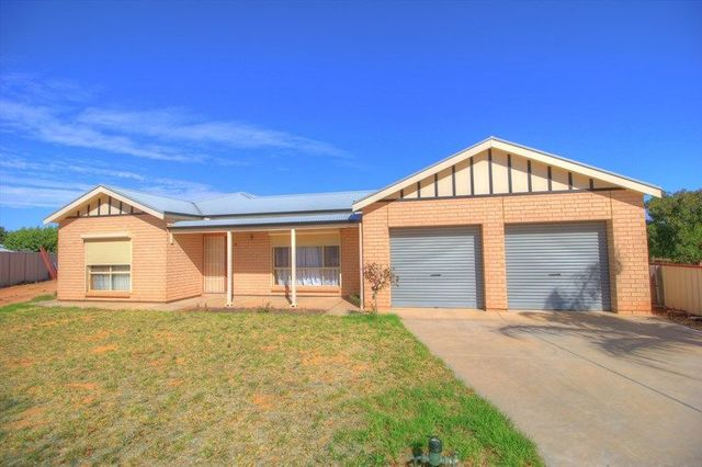 11 Stasinowsky Court, SA 5333