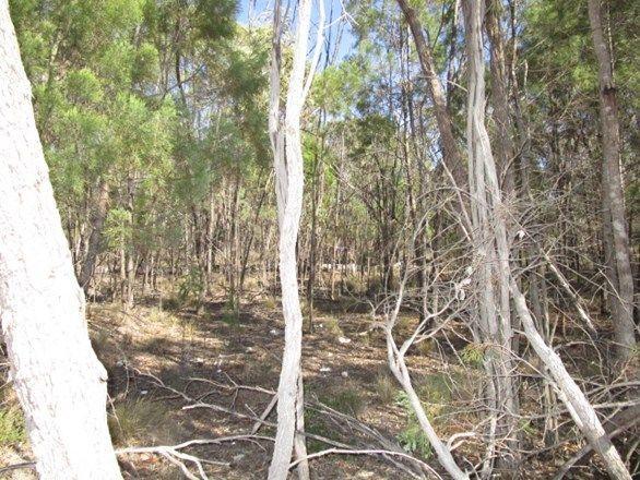 LOT 52 Bungybah Road, Tara QLD 4421