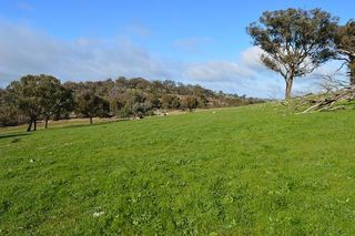 lot 2 / 94 Old Cootamundra Road