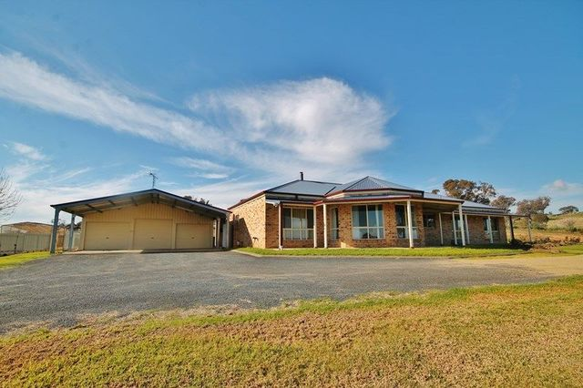 39 Burrows Road, Young NSW 2594