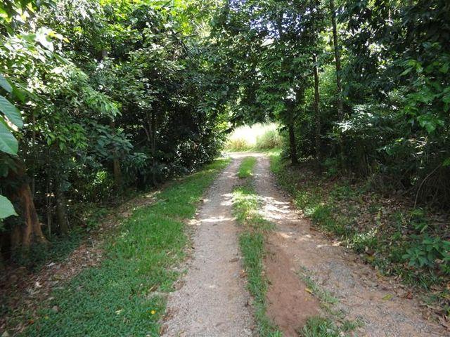 Plantation Drive, Bingil Bay QLD 4852