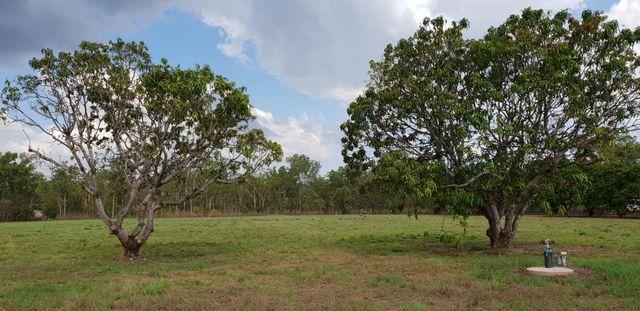 135 Setosa Road, NT 0836