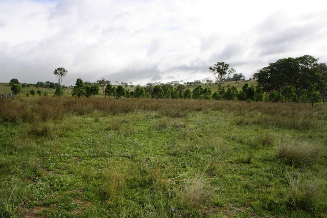 Lot 5 Long Swamp Road, QLD 4370