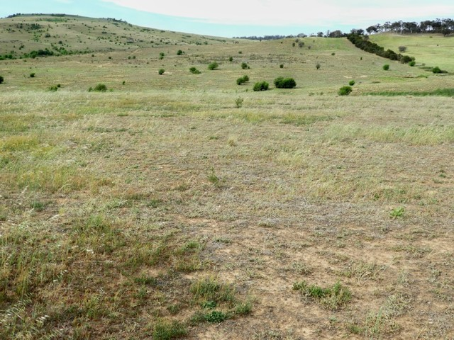 Lot 23 Pomeroy Road, Goulburn NSW 2580
